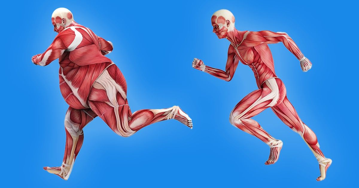 Which Parts of Your Body Will Get More Fit Depending on the Kind of Exercise You Choose
