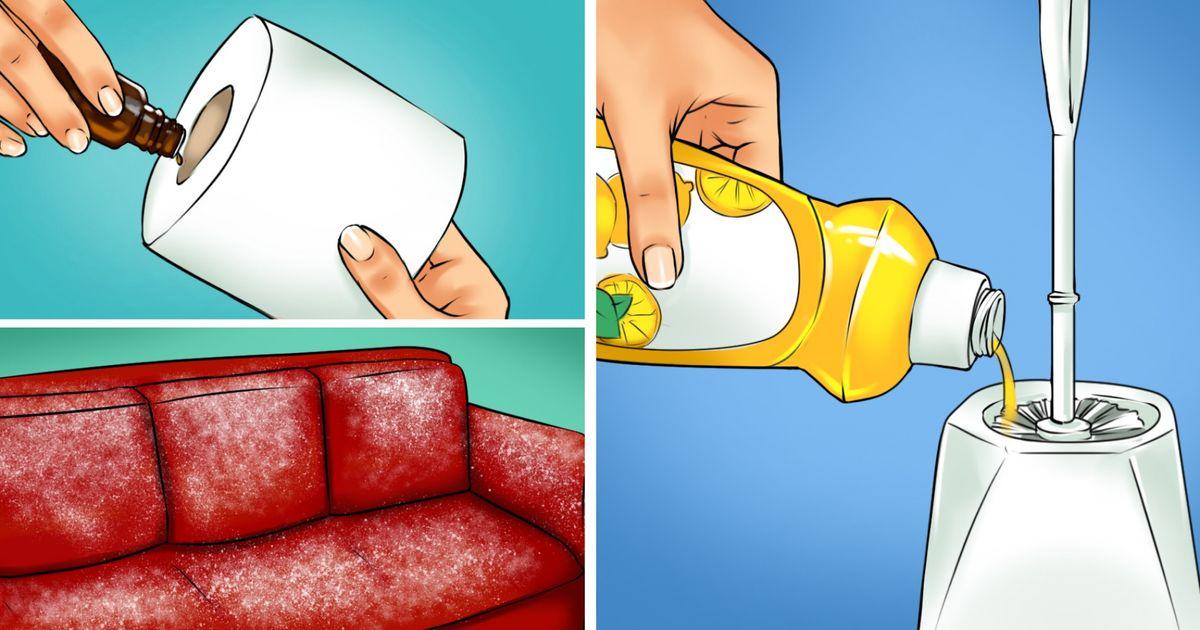 17 cách để loại bỏ mùi hôi từ nhà của bạn