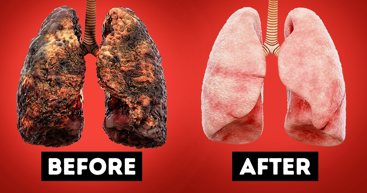 I Gave Up Smoking And Drinking And Here S How It Changed My Life