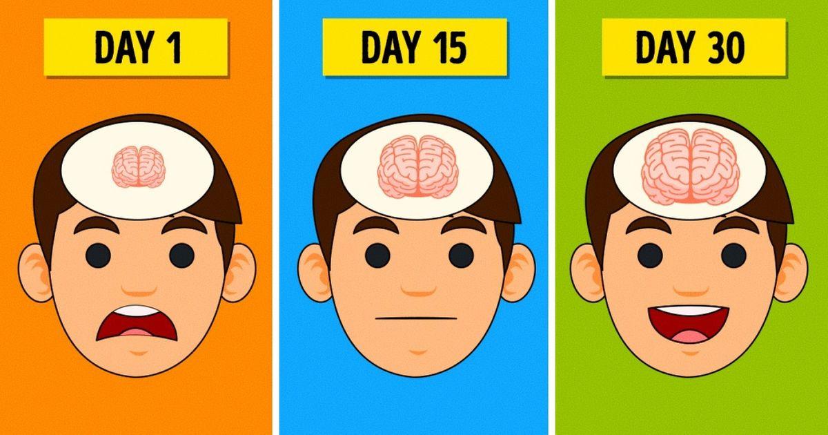 Brain Food - cover