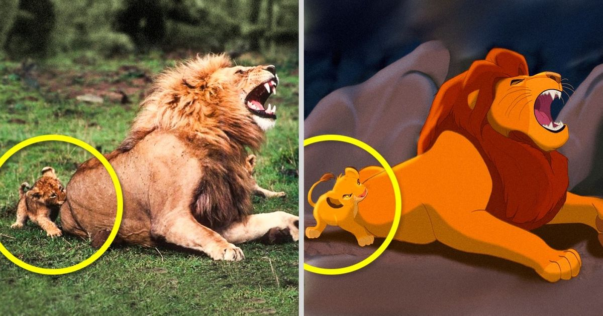These 14 Animals Are Exact Copies Of Our Favorite Animated Movie Characters
