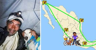 A Man Rescues 500 Abandoned Dogs and Gets Them a New Home While Driving Across Mexico on His Tricycle
