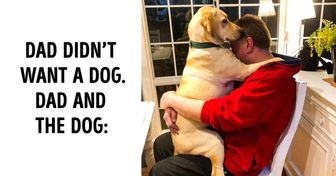 """20 People Who Didn't Want """"Those Pets in the House"""" but Now Can't Spend a Day Without Them"""