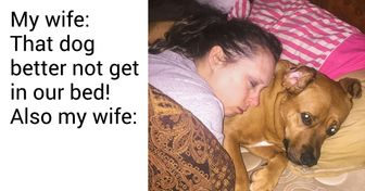 20 Times Dogs Proved They're Just Like Babies, Only Way Bigger