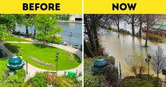 Look How Flooding Has Changed the Center ofParis. And, Yes, ItIsHappening Right Now.
