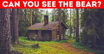 WeBet You Can't Find All the Animals inThese Photos