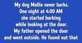 Bright Side Readers Told 15 Stories About Animals Who Helped Their Owners When They Least Expected It