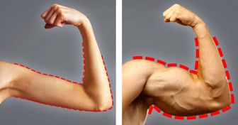 19Foods toHelp You Gain Weight and Muscle Faster