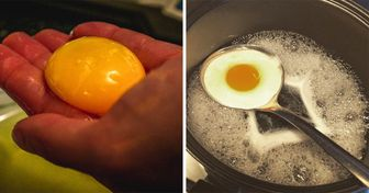 20+Ways toEscape the Nasty Cooking Mishaps That Ruin Your Day