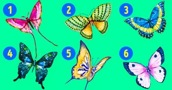The Butterfly You Choose Can Reveal the Hidden Sides ofYour Personality
