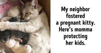 18 Heart-Melting Photos That Could Illustrate Love in a Picture Dictionary