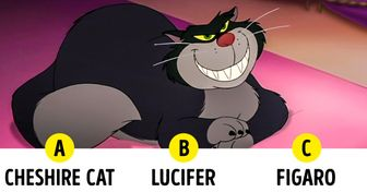 Test: Find Out If You Can Name These 14 Disney Cats
