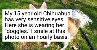 18 Users Shared Joyful Moments That Made Them Smile From Ear to Ear This Month