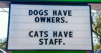 20Vet Signs ToProve That Working With Animals Brings Out ALot OfHilariousness