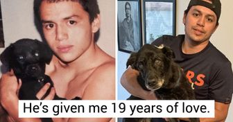 15+ Pics of Senior Pets That Prove Love Only Grows Stronger Over Time