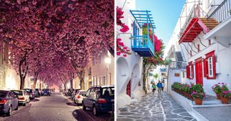 22 Beautiful Streets That Are a Dream Come True to Live On