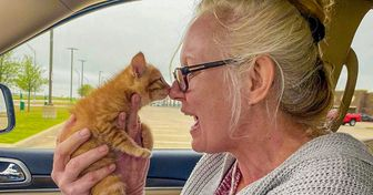 20 Photos That Will Put Tenderness Into Your Heart