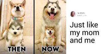 20 Pics That Show Us How Time Can Change Anything but True Love