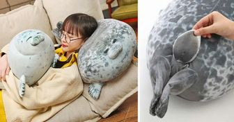 There Are Squishy Chubby Pillows That Copy Real Seals, and They Are Just Perfect for Hugging