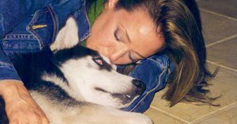 Why Dogs Get Deeply Attached to Just One Special Person