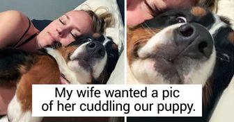 20 People Who Can't Live Without Their Furry Pals