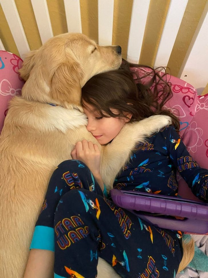 15 Photos Showing the Depth of Animal-Human Relationships