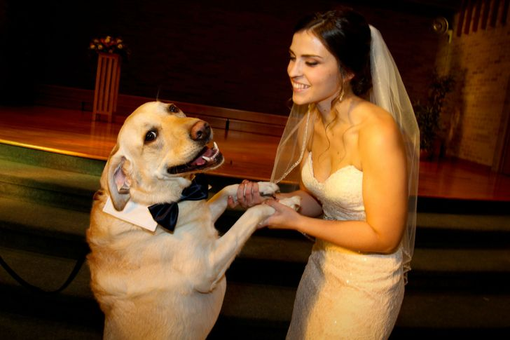20+ Photos Proving That Everyone Needs a Big Good Boy in Their Lives