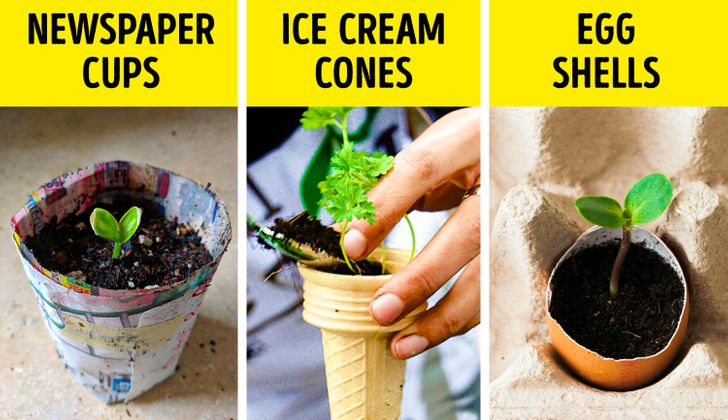 15 Hacks You Can Use to Finally Get the Garden of Your Dreams