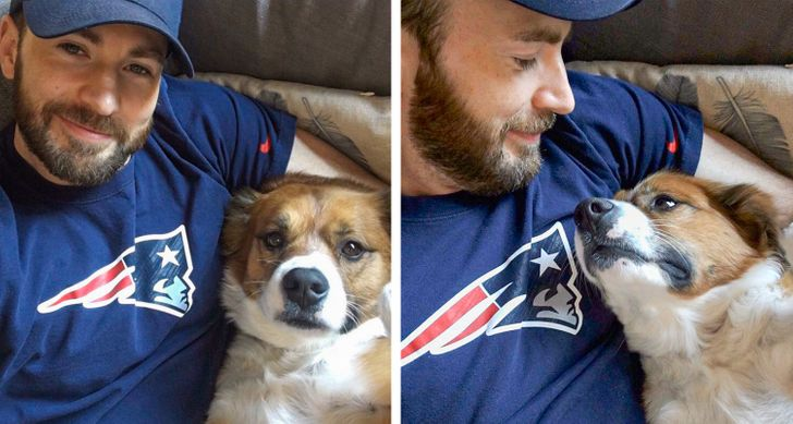 19 Selfies Where Pets Stole the Show
