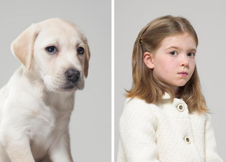 A Photographer Compares Portraits of Pets and Their Owners, and the Results Are Too Similar to Be Ignored