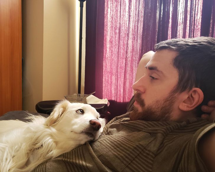 20+ Pets Who Stare Right Into Their Owners' Souls