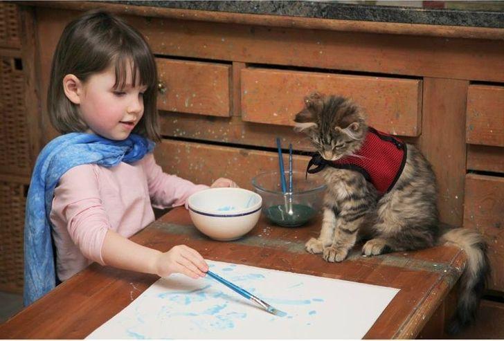 Znanstvenici su pronašli 8 razloga da imate mačku kod kuće (da, purring je jedan od njih)