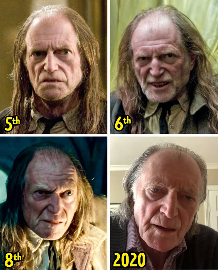 """How 14 Characters From """"Harry Potter"""" Changed, and What the Actors Look Like Today"""