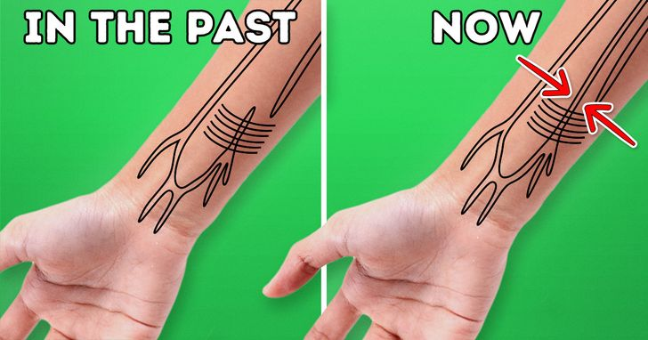 5 Signs That Show Humans Have Started to Evolve Pretty Fast