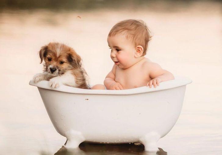 Fotograf zachytáva deti maznanie so zvieratami a je to najčistejšia vec, akú sme kedy videli