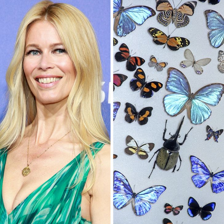 We Made a List of Surprising Celebrity Interests to See Who Has the Most Unusual One