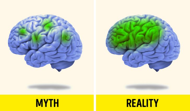 10 Myths About the Brain That Have Been Busted by Scientists