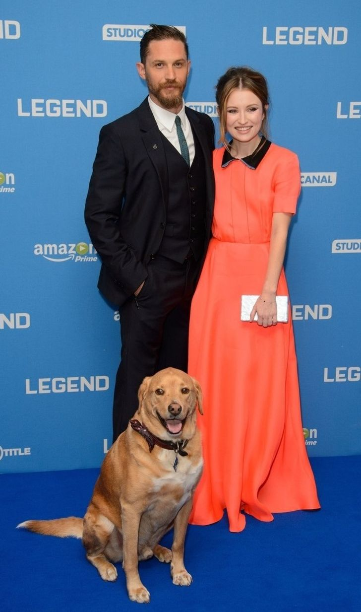 14 Legendary Photos Proving Tom Hardy's Love for Dogs Is Better Than Your Fairytale Romance
