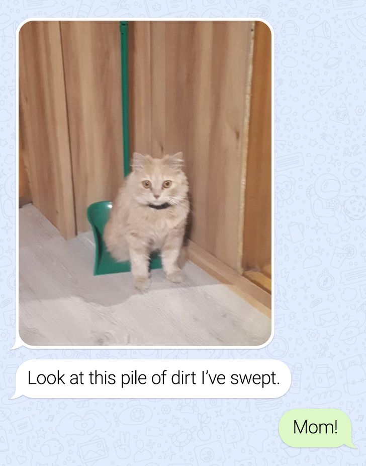 13 Texts With a Cool Twist That Are Worth Reading Till the End
