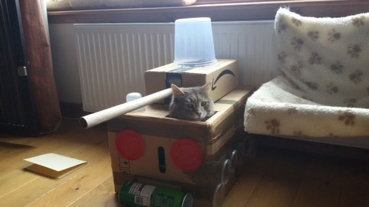 15+ Cats That Are Ready to Conquer the World With These Homemade Tanks