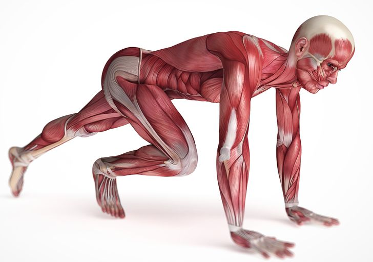 10 تمارين سهلة لقتل آلام الظهر وتنظيف عضلات البطن في نفس الوقت