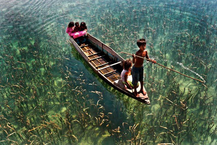20Absolutely Superb Photos That Reveal Life inAll Its Beauty
