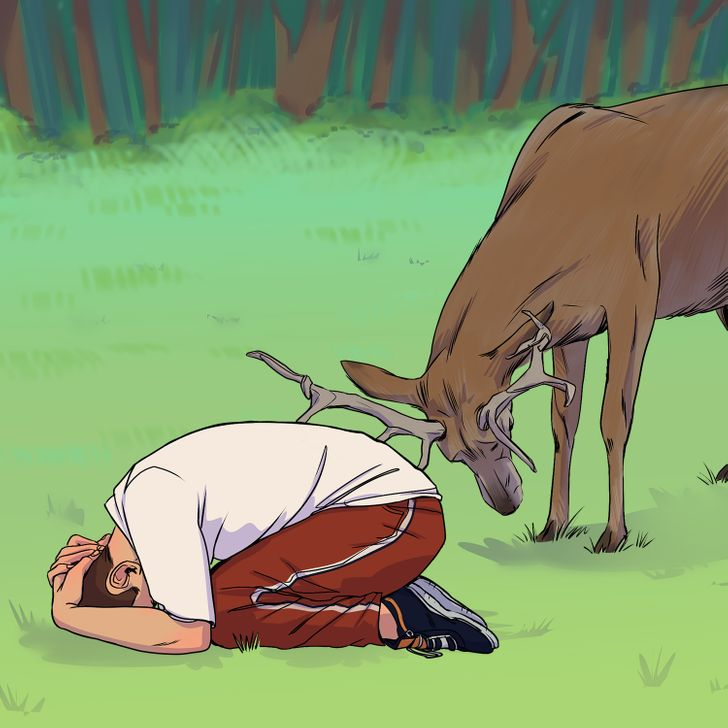 Vahşi Bir Hayvanla Karşılaştığında Kendini Nasıl Kurtaracağına Dair 8 İpucu
