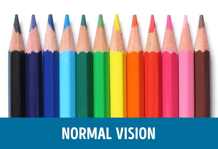 How People With Different Kinds of Color Blindness See the World