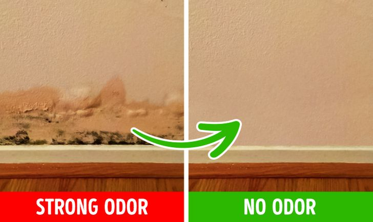 6 Reasons for Bad Smells in Your House and How to Fix Them