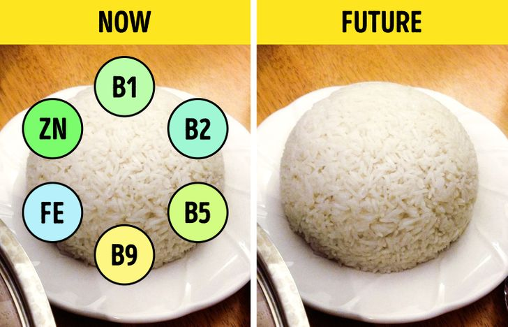 10 Foods We Can Never Eat Again Because of Climate Change