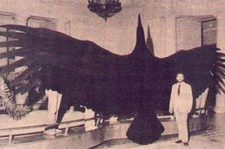 The16 Largest Things onEarth