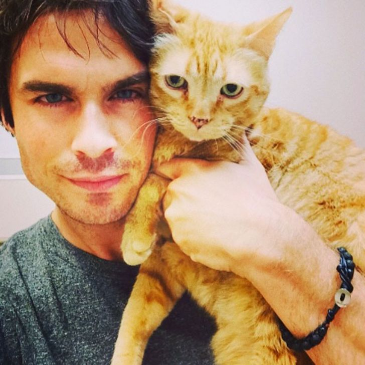 15handsome men with their kittens