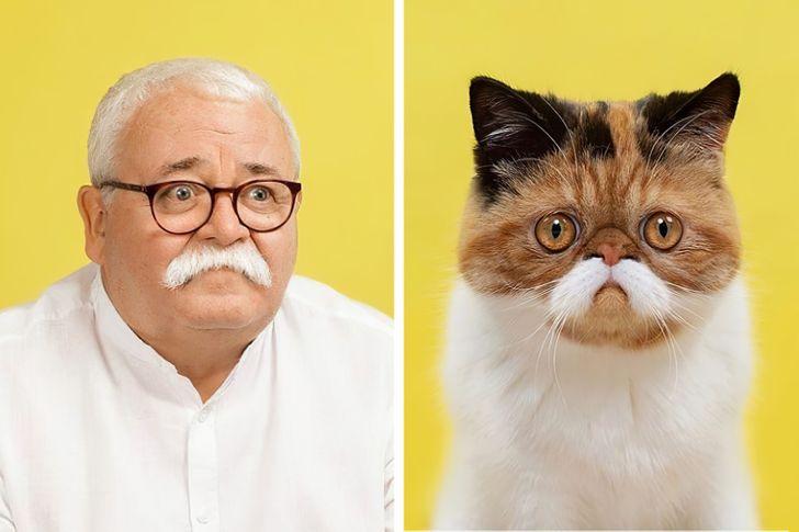 Fotograf porovnáva portréty domácich miláčikov a ich majiteľov a výsledky sú príliš podobné na to, aby boli ignorované