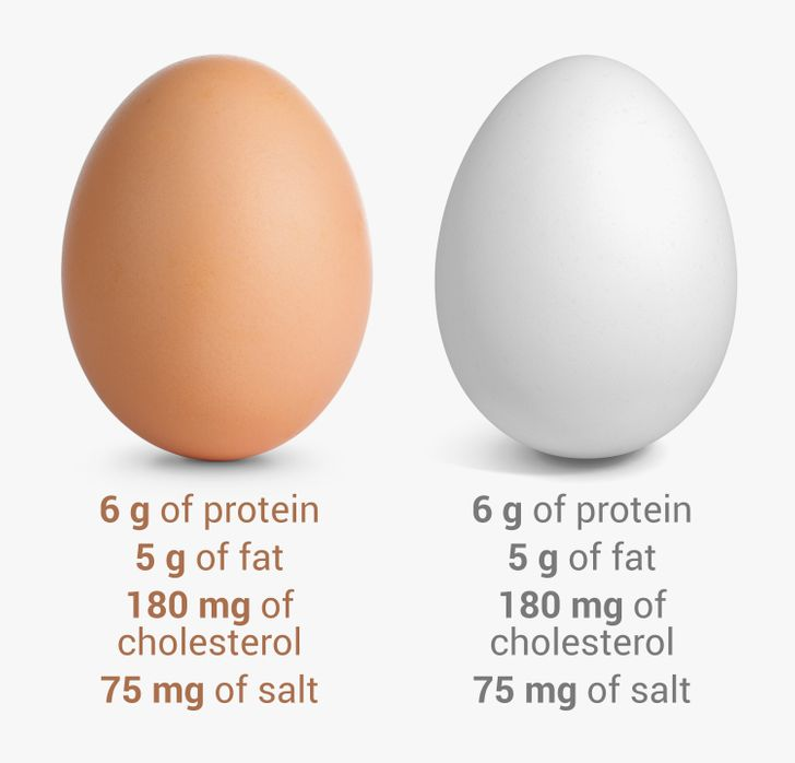 16Egg Myths WeShould Forget About inthe 21st Century